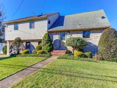 Massapequa Single Family Home For Sale: 340 Harrison Ave