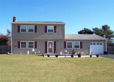 Medford Single Family Home For Sale: 5 Naybor Ave