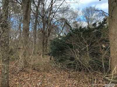 Ronkonkoma Residential Lots & Land For Sale: Baeck Street