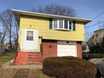Westbury Single Family Home For Sale: 561 Church St
