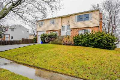 Farmingdale Multi Family Home For Sale: 78 Wall St