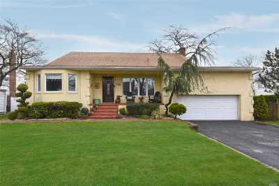 Valley Stream Single Family Home For Sale: 780 Longview Ave