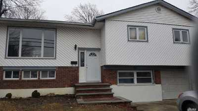 Massapequa Single Family Home For Sale: 91 Carmans Rd