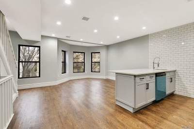Brooklyn Multi Family Home For Sale: 247 Arlington Ave