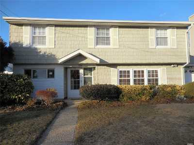 Massapequa Single Family Home For Sale: 199 N Delaware Ave