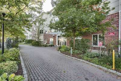 Great Neck Condo/Townhouse For Sale: 171 Great Neck Rd #3H