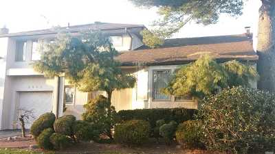 N. Bellmore Single Family Home For Sale: 2449 Sycamore Ln