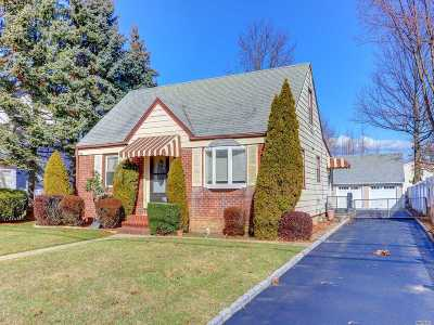 East Meadow Single Family Home For Sale: 373 Chestnut Ave