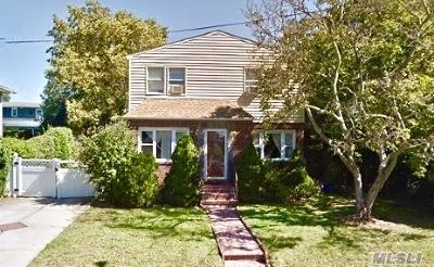 New Hyde Park Single Family Home For Sale: 56 2nd Ave