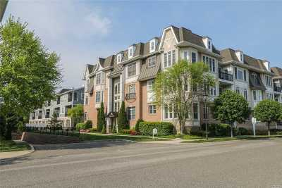 Westbury Condo/Townhouse For Sale: 701 Roosevelt Way