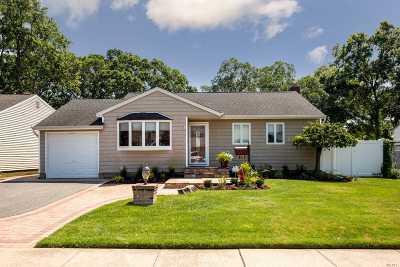 N. Massapequa Single Family Home For Sale: 338 N Hickory St