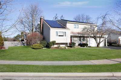 Plainview Single Family Home For Sale: 44 Ruby Ln