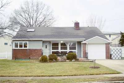 Bethpage Single Family Home For Sale: 3829 Windsor Dr