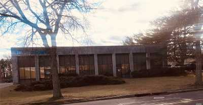 Hauppauge Commercial For Sale: 295 Oser Ave