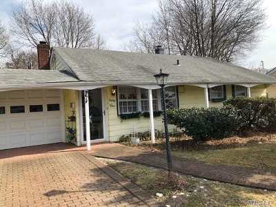 Bethpage Single Family Home For Sale: 51 W Millpage Dr