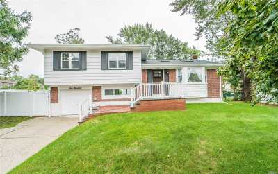 Plainview Single Family Home For Sale: 200 Haypath Rd