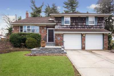 Hewlett Single Family Home For Sale: 25 Holiday Ct
