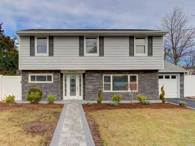 N. Massapequa Single Family Home For Sale: 317 N Utica Ave