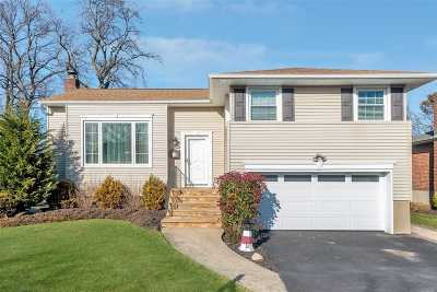Seaford Single Family Home For Sale: 3951 Anne Dr
