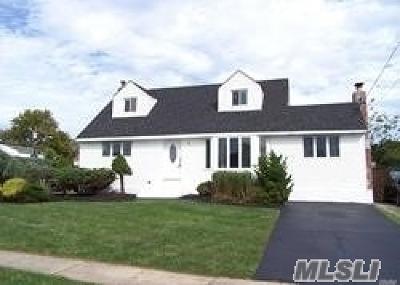 Deer Park Single Family Home For Sale: 213 Homer Ave