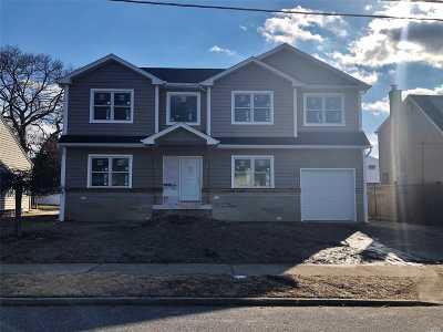 Massapequa Park Single Family Home For Sale: 212 Aster St