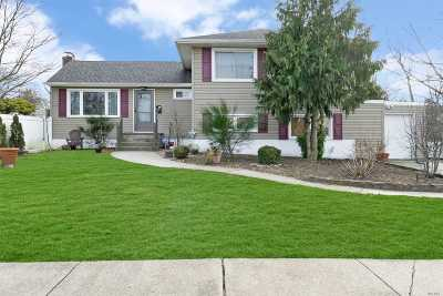 Seaford Single Family Home For Sale: 3994 David Pl