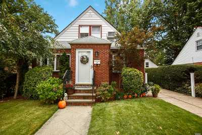 New Hyde Park Single Family Home For Sale: 703 6th Ave