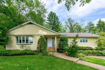 Plainview Single Family Home For Sale: 6 Long Ridge Rd