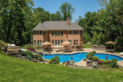 Dix Hills Single Family Home For Sale: 24 Kendrick Ln