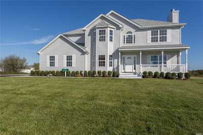 Manorville Single Family Home For Sale: N/C Woodland Ave