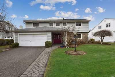 Plainview Single Family Home For Sale: 123 Grace St