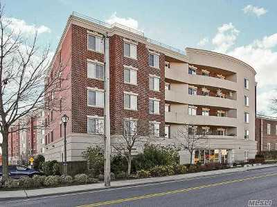 Westbury NY Condo/Townhouse For Sale: $429,000