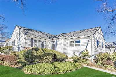 Franklin Square Single Family Home For Sale: 390 Eton Rd