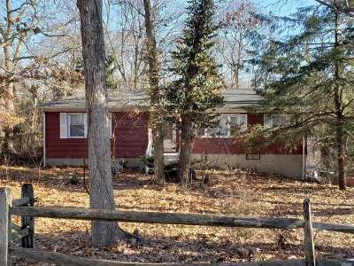 Smithtown Single Family Home For Sale: 61 Plymouth Blvd