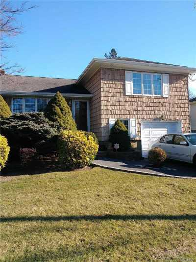 Massapequa Park Single Family Home For Sale: 135 2nd Ave