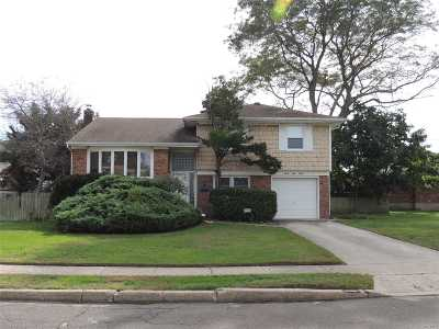 Wantagh Single Family Home For Sale: 3180 Birch Dr
