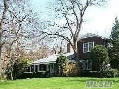 Great Neck Single Family Home For Sale: 64 Meadow Woods Rd