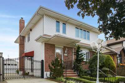 Middle Village Single Family Home For Sale: 75-12 Penelope Ave