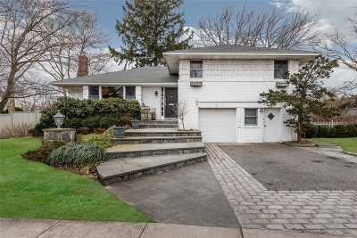 Westbury Single Family Home For Sale: 844 Regent Dr