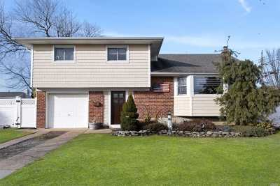 Massapequa Single Family Home For Sale: 417 N Central Dr
