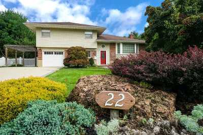Commack Single Family Home For Sale: 22 Terry Ln