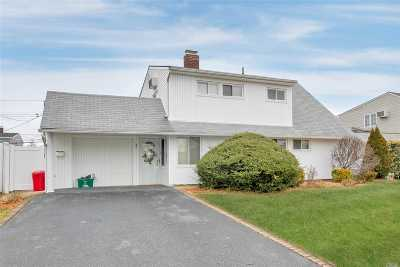 Wantagh Single Family Home For Sale: 37 Downhill Ln