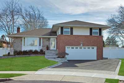 Plainview Single Family Home For Sale: 7 Dee Ct
