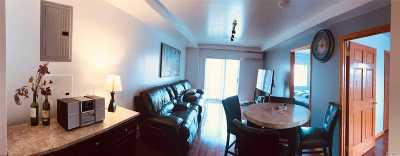 Flushing Condo/Townhouse For Sale: 141-18 Cherry Ave #4D