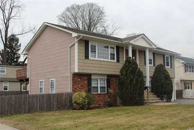 Hicksville Multi Family Home For Sale: 146 Bay Ave