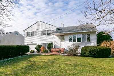 Nassau County Single Family Home For Sale: 207 Island Park Way Pkwy