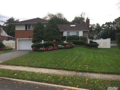 Westbury Single Family Home For Sale: 845 Leonard Dr