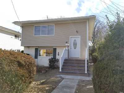Westbury Single Family Home For Sale: 42 4th Ave