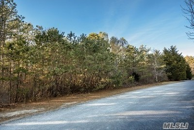 Residential Lots & Land For Sale: 7 Kate Ct