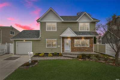 Massapequa Park Single Family Home For Sale: 313 Philadelphia Ave